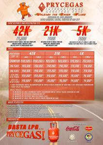 Prycegas International Marathon 2012