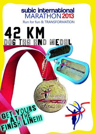 SIM 2013 Medal