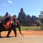 Ankor Wat Marathon 2014 - Temple