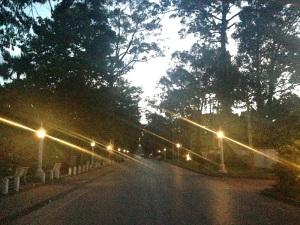 Angkor Wat Marathon 2014 - City View