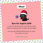 Run for Aspins 2019 Poster